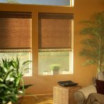 Roller Shades with Trim