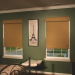 Roller Shade with Valance